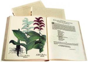 Hortus Eystettensis, facsimile edition