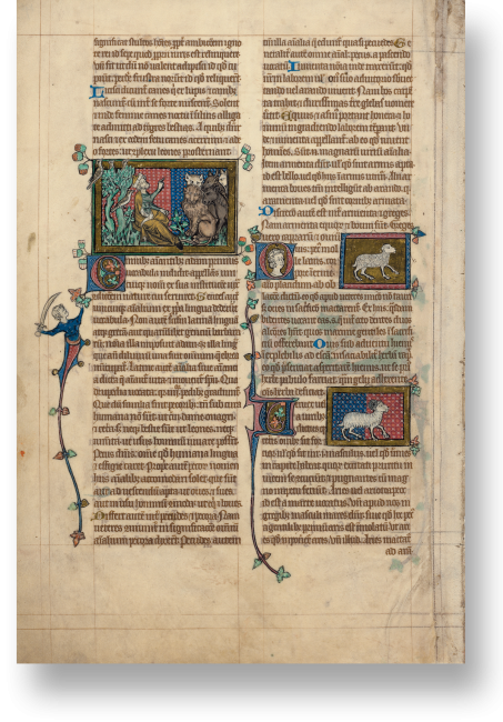Fol. 195v: Einleitung des Kapitels über Haus- und Lasttiere mit der Beschreibung Adams (gekleidet als Gelehrter), der die Tiere benennt (Miniatur linke Spalte).