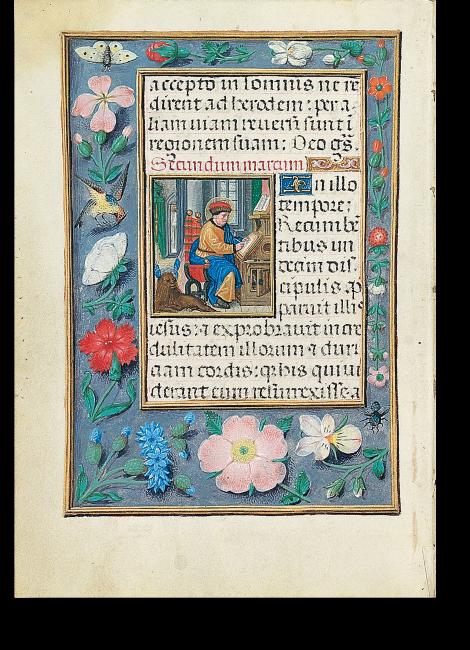 Fol. 14v: Der Evangelist Markus beim Schreiben. Im Rahmen der für das Werk typische prachtvolle Blumenschmuck, ergänzt durch Insekten und Vögel.