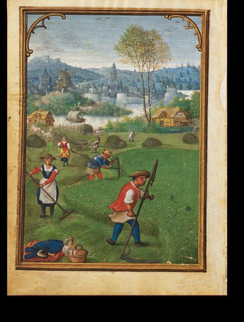 Fol. 8v: Monatsbild Juli: Heuernte. Durch die Positionierung der vier Figuren im Bild deutet Bening räumliche Tiefe an und erreicht eine durchgehende Gestaltung.