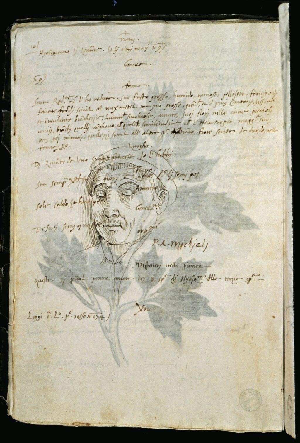 Libro Verde, f.10v: Portrait of Pietro Antonio Michiel