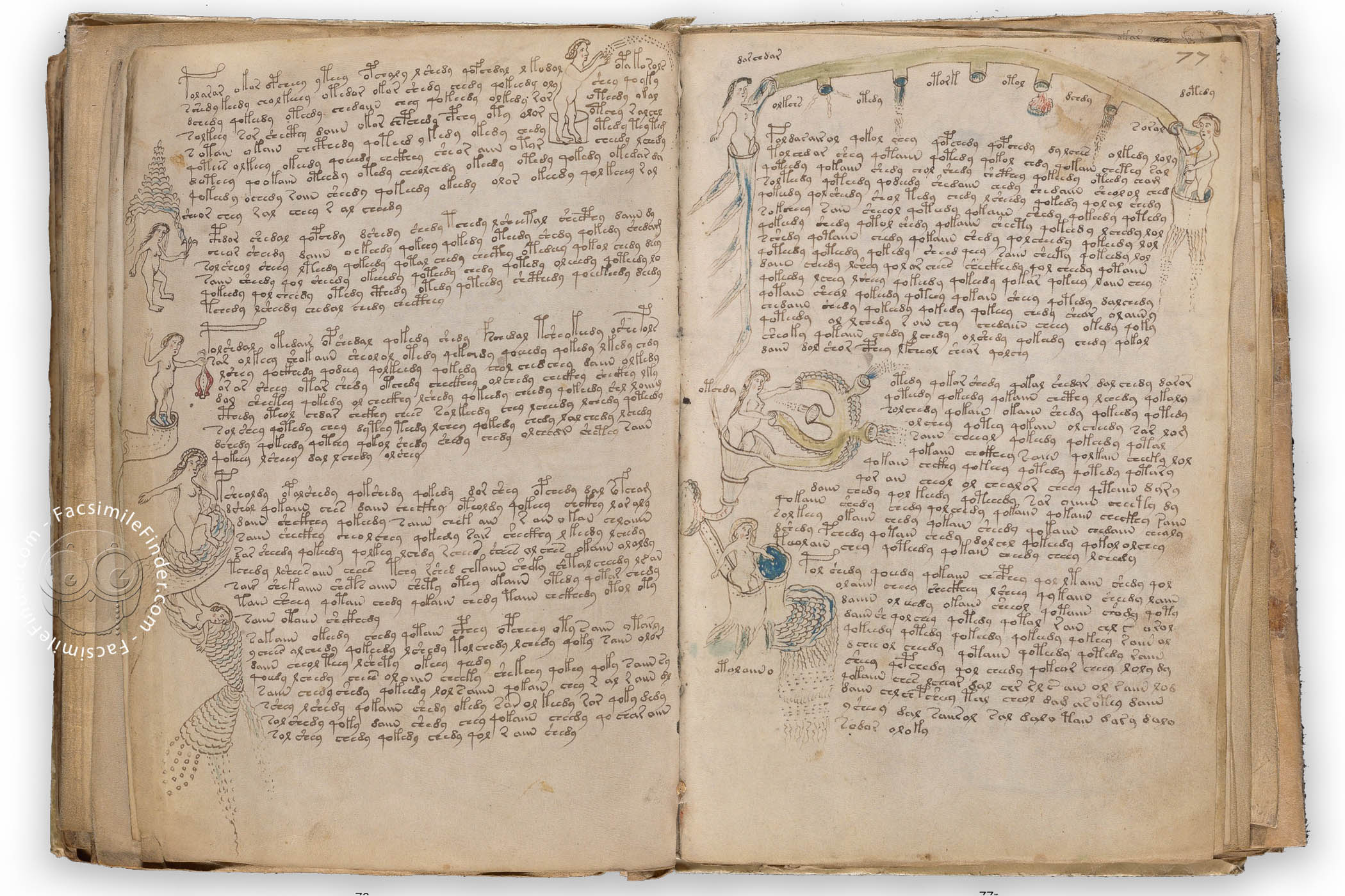 Voynich Manuscript Facsimile: An Opening On The Mysterious Cipher Written  In An Unknown Script