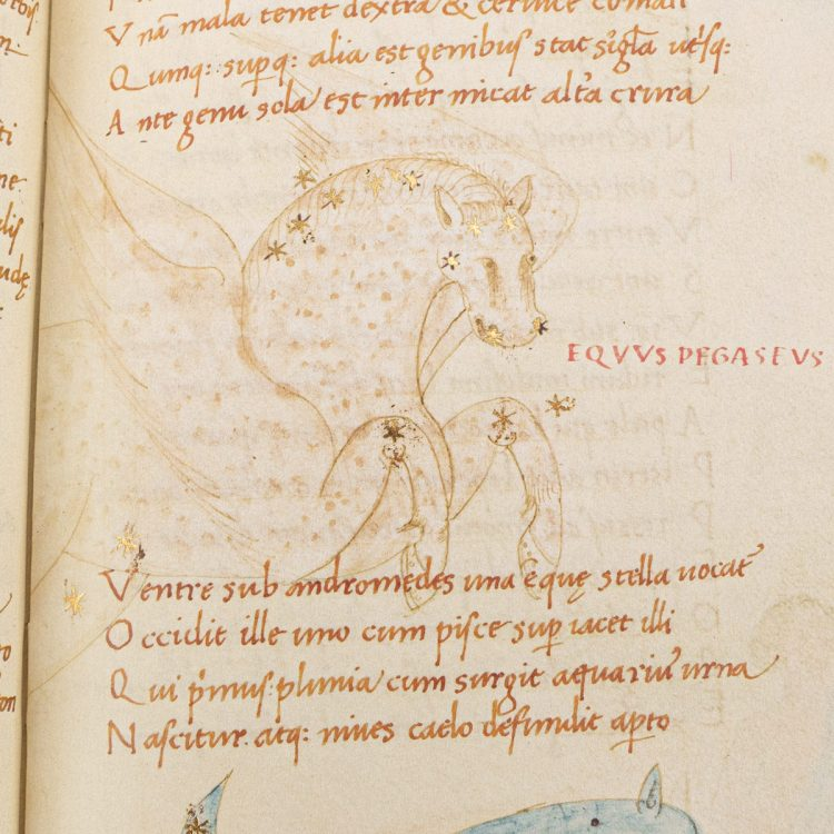 Detail of the Astronomicon, MS. Bodl. 646