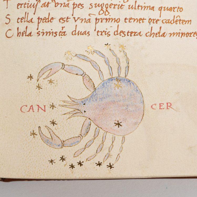 Detail of the Astronomicon by Basilio da Parma