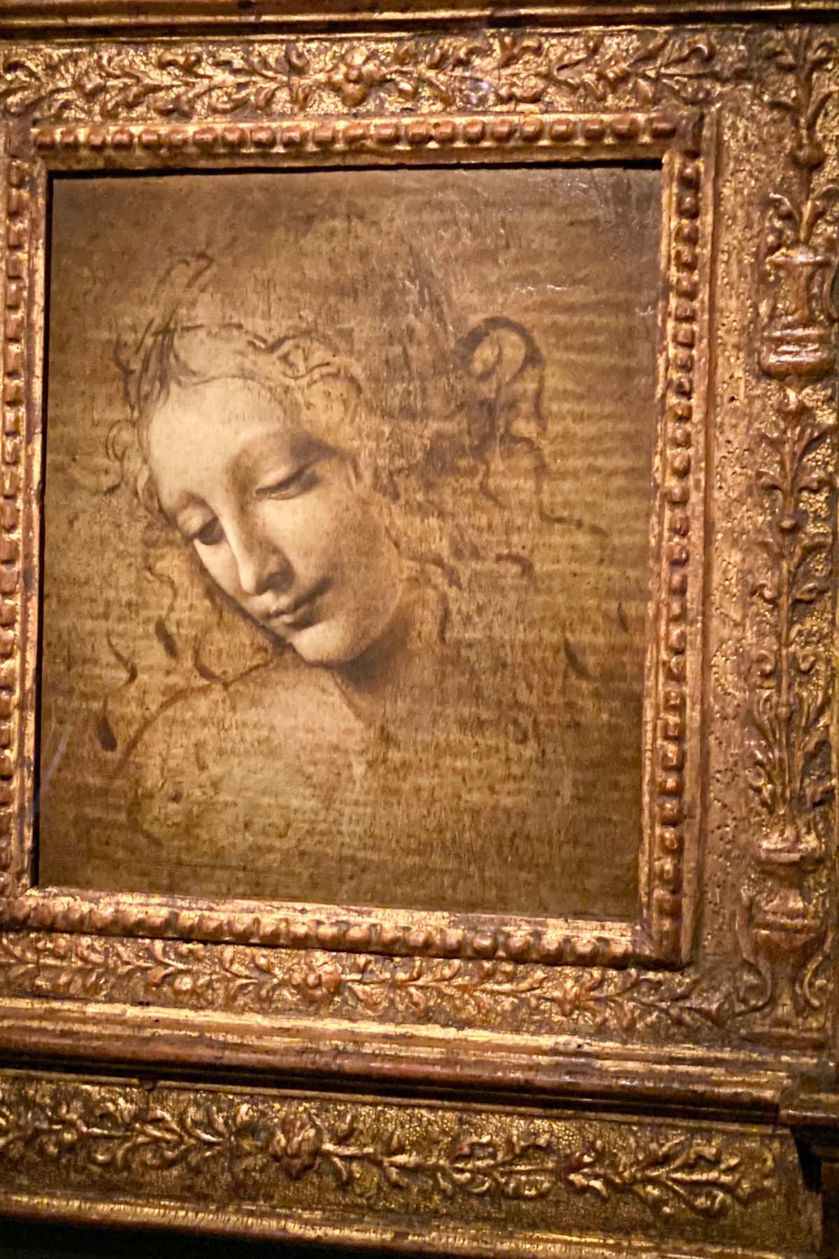 Leonardo da Vinci Exhibition in the Louvre Museum: Female Head