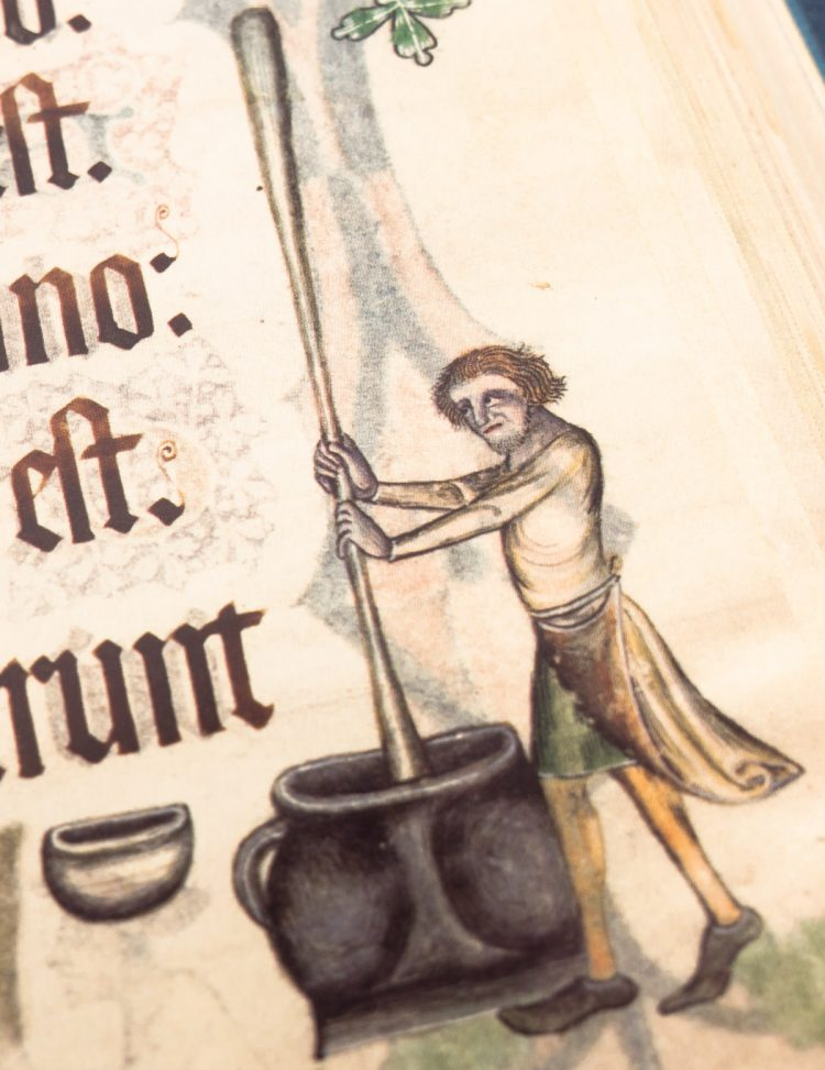 Detail of the Luttrell Psalter