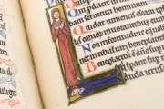 Munich Golden Psalter, Clm 835 - Bayerische Staatsbibliothek (Munich, Germany) − photo 11
