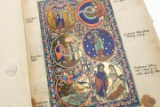 Munich Golden Psalter, Clm 835 - Bayerische Staatsbibliothek (Munich, Germany) − photo 13