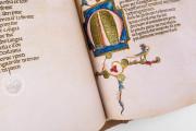 Divina Commedia di San Bernardo, Padua, Biblioteca del Seminario vescovile, Cod. 9 − Photo 22