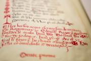 Libro de Horas de la Reina Doña Leonor, Lisbon, Biblioteca Nacional de Portugal, II.165 BNP − Photo 6