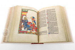 Codex Manesse Facsimile Edition