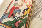Codex Manesse, Heidelberg, Universitätsbibliothek Heidelberg, Cod. Pal. germ. 848 − Photo 6