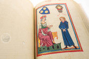 Codex Manesse, Heidelberg, Universitätsbibliothek Heidelberg, Cod. Pal. germ. 848 − Photo 9
