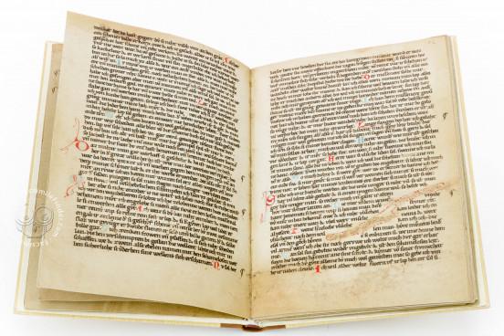Die Kleine Heidelberger Liederhandschrift, Heidelberg, Universitätsbibliothek Heidelberg, Cod. Pal. germ. 357 − Photo 1