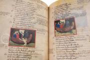 Il Codice Filippino della Commedia di Dante Alighieri, Naples, Biblioteca Oratoriana dei Girolamini, MS. CF 2 16 − Photo 12