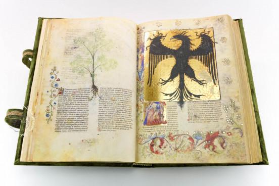 Historia Plantarum, Ms. 459 - Biblioteca Casanatense (Rome, Italy) − photo 1