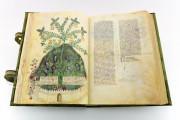 Historia Plantarum, Ms. 459 - Biblioteca Casanatense (Rome, Italy) − photo 4