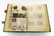 Historia Plantarum, Ms. 459 - Biblioteca Casanatense (Rome, Italy) − photo 10