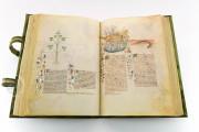 Historia Plantarum, Ms. 459 - Biblioteca Casanatense (Rome, Italy) − photo 14