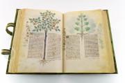 Historia Plantarum, Ms. 459 - Biblioteca Casanatense (Rome, Italy) − photo 16