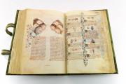 Historia Plantarum, Ms. 459 - Biblioteca Casanatense (Rome, Italy) − photo 25