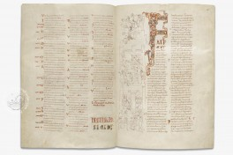 Rodes Bible Facsimile Edition