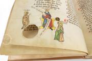 Der Wälsche Gast, Gotha, Forschungs- und Landesbibliothek, Ms. Memb I 120 − Photo 6