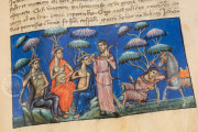 History of the Trojan People, Madrid, Biblioteca Nacional de España, MSS/17805 − Photo 6