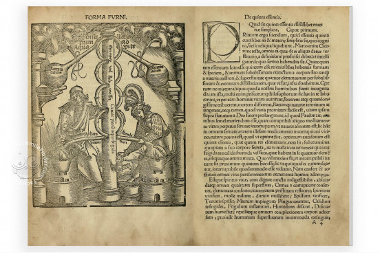 Coelum philosophorum seu de Secretis Naturae, Madrid, Biblioteca General de la Universidad Complutense − Photo 1