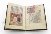 Prayers of Repentance by Albrecht Glockendon for John II Palatin, 10013 - Bayerische Staatsbibliothek (Munich, Germany) − photo 9
