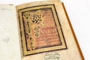 Vita Kiliani, Hannover, Niedersächsische Landesbibliothek, Ms. I 189 − Photo 14