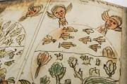 Codex Choumach (Picture Pentateuch of Moses dal Castellazzo), Warsaw, Zydowski Instytut Historyczny, Codex 1164 − Photo 14