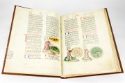 Vorau Picture Bible, Vorau, Stift Vorau, Codex 273 − Photo 19