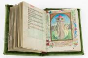 Defensorium inviolatae virginitatis Beatae Mariae, Dublin, National Library of Ireland, Ms 32, 513 − Photo 8