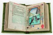 Defensorium inviolatae virginitatis Beatae Mariae, Dublin, National Library of Ireland, Ms 32, 513 − Photo 11