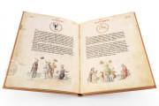 Liber Physiognomiae, Modena, Biblioteca Estense Universitaria, Ms. Lat. 697 = α.W.8.20 − Photo 7