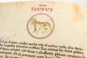Liber Physiognomiae, Modena, Biblioteca Estense Universitaria, Ms. Lat. 697 = α.W.8.20 − Photo 17
