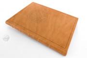 Liber Physiognomiae, Modena, Biblioteca Estense Universitaria, Ms. Lat. 697 = α.W.8.20 − Photo 21