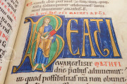 Berthold Sacramentary, New York, The Morgan Library & Museum, Ms M. 710 − Photo 26