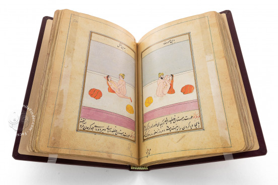 Ladhdhat al-nisâ (The pleasures of women), Paris, Bibliothèque Nationale de France, Suppl. persan 1804 − Photo 1