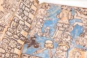 Codex Tro-Cortesianus (Codex Madrid), Madrid, Museo de América, The Codex Trocortesiano deluxe edition is published by Testimonio Cia Editorial