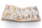 Codex Fejérváry-Mayer, Museum of the City (Liverpool, United Kingdom) − photo 17