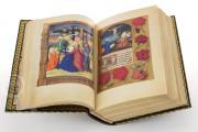 La Flora - Book of Hours, Naples, Biblioteca Nazionale Vittorio Emanuele III, Ms. I.B.51 − Photo 5