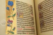 La Flora - Book of Hours, Naples, Biblioteca Nazionale Vittorio Emanuele III, Ms. I.B.51 − Photo 7