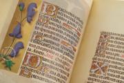 La Flora - Book of Hours, Naples, Biblioteca Nazionale Vittorio Emanuele III, Ms. I.B.51 − Photo 12