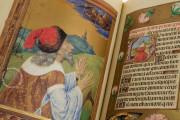 La Flora - Book of Hours, Naples, Biblioteca Nazionale Vittorio Emanuele III, Ms. I.B.51 − Photo 13