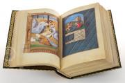 La Flora - Book of Hours, Naples, Biblioteca Nazionale Vittorio Emanuele III, Ms. I.B.51 − Photo 14