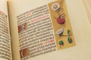 La Flora - Book of Hours, Naples, Biblioteca Nazionale Vittorio Emanuele III, Ms. I.B.51 − Photo 15