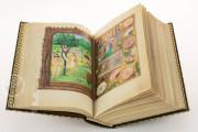 La Flora - Book of Hours, Naples, Biblioteca Nazionale Vittorio Emanuele III, Ms. I.B.51 − Photo 17