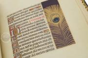 La Flora - Book of Hours, Naples, Biblioteca Nazionale Vittorio Emanuele III, Ms. I.B.51 − Photo 18